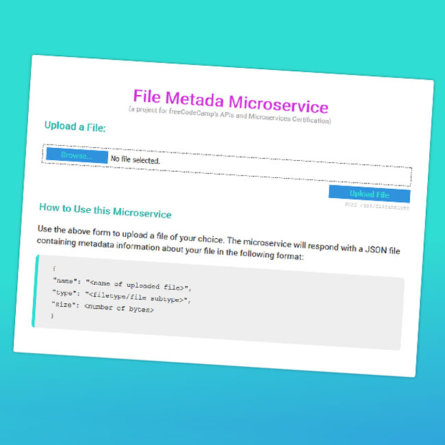 A screenshot of my take on the file metadata microservice project for freeCodeCamp.